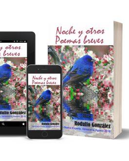 Noche y Otros Poemas Breves