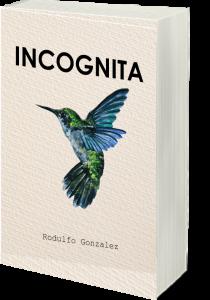 Incógnita por Rodulfo Gonzalez