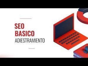 Read more about the article Entrenamiento en SEO Básico Coaching Program