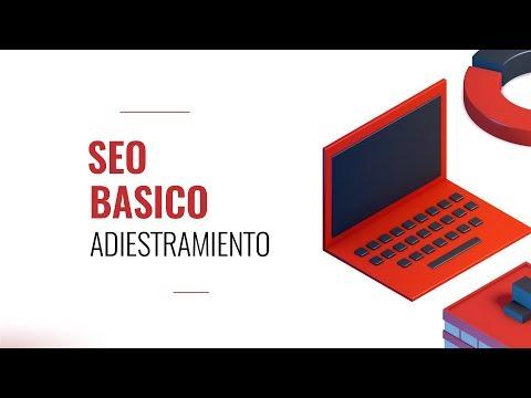 You are currently viewing Entrenamiento en SEO Básico Coaching Program